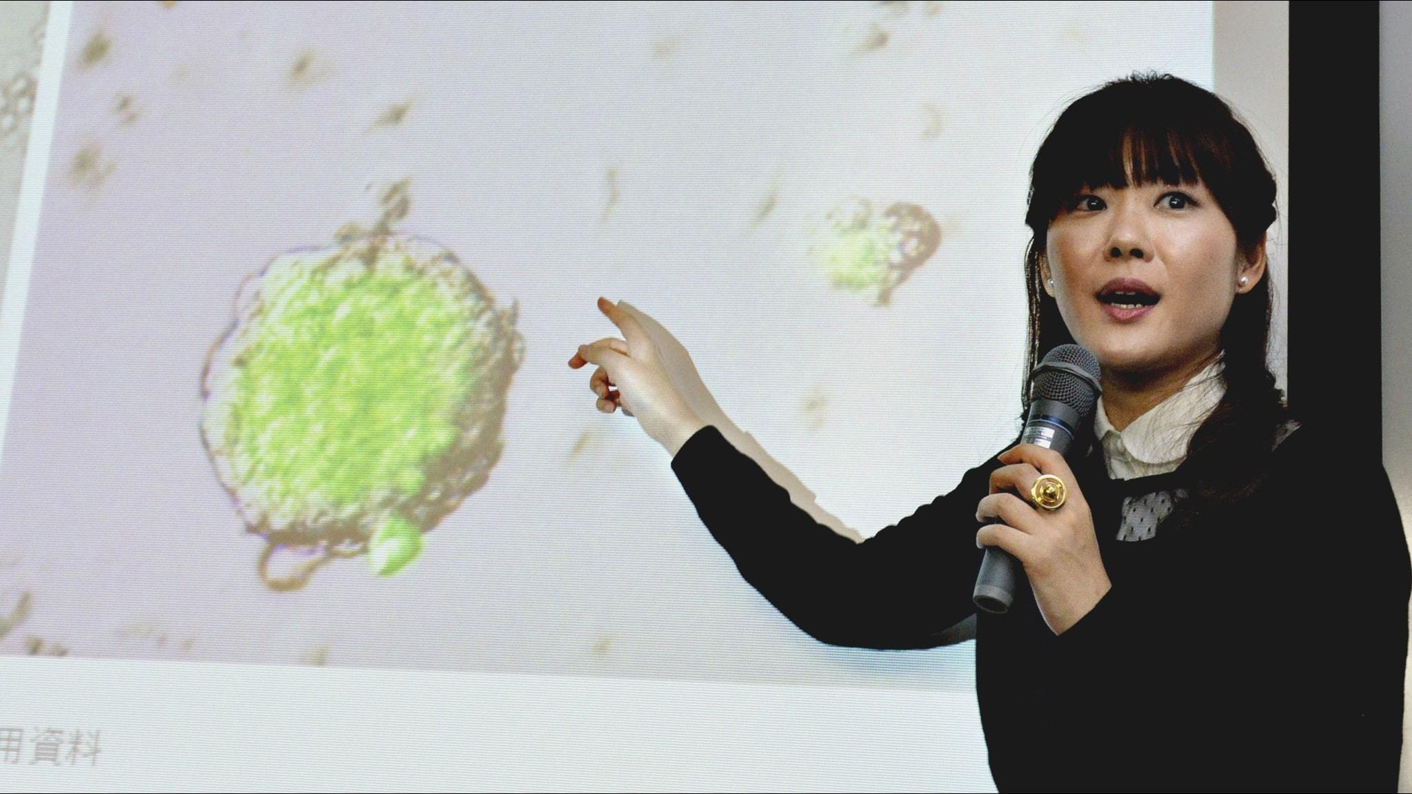 Haruko Obokata under en föreläsning