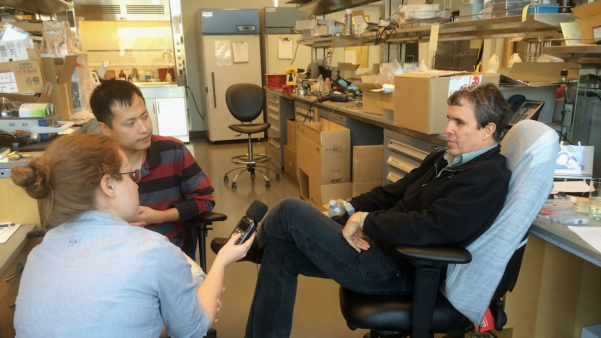 Eric Betzig och post-doc Kai Wang diskuterar resultaten från ett nytt mikroskop. Foto: Janelia research institute