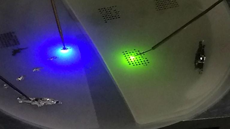 Blå och gröna små LED-lampor lyser när doktoranden John Leonard leder ström genom materialet han provar.
