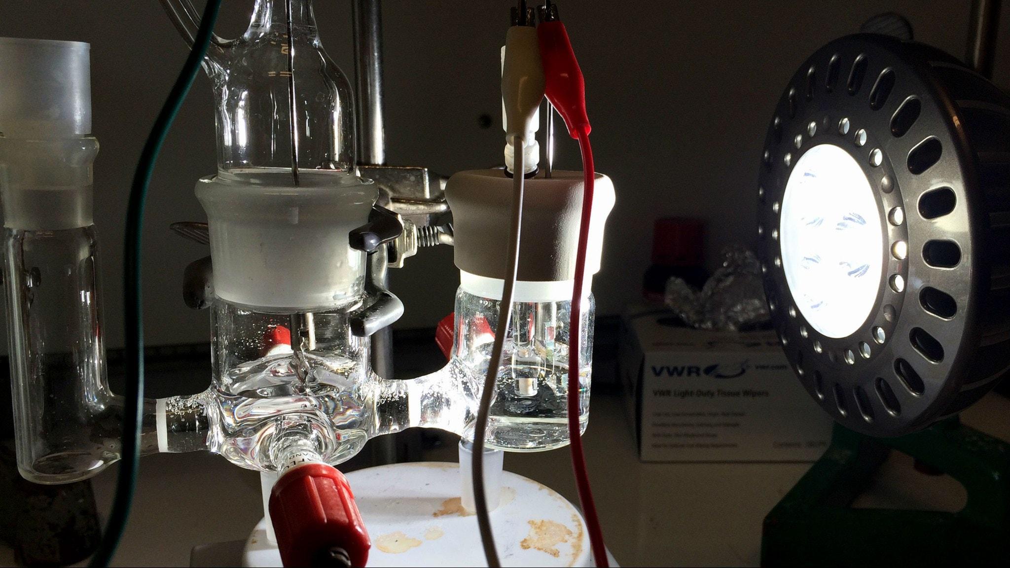 Här testas en konstgjord fotosyntesmolekyl, vätgas lossnar ur vattnet i behållaren till höger.