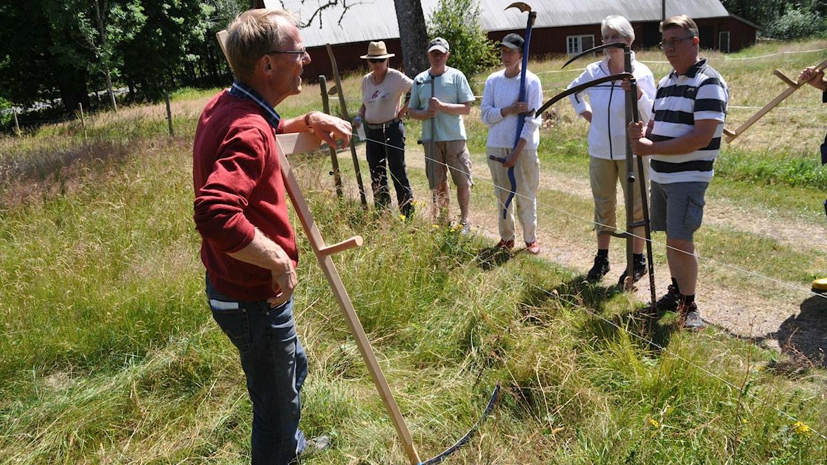 Kjell Gustavsson på en äng med kursdeltagare med liar. Foto: Tomas Lindberg/SR