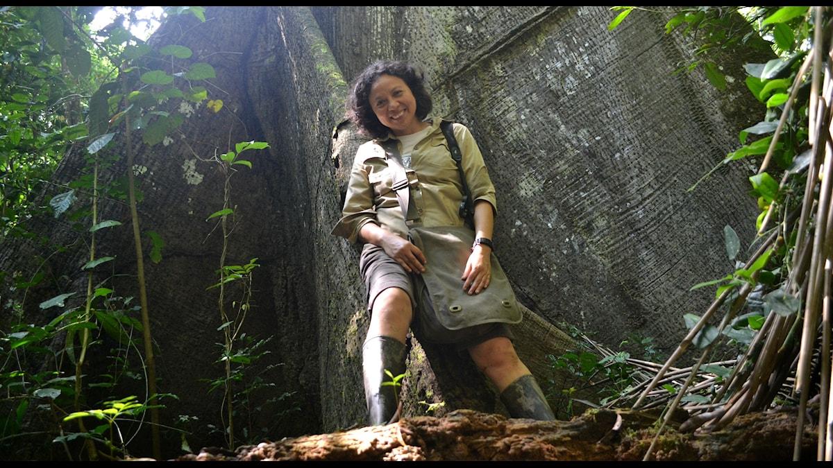 Roxana Araucowebb framför träd