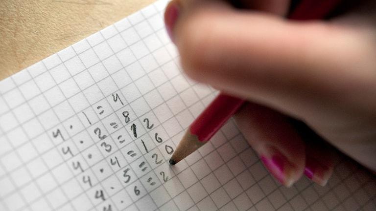 Elev räknar i häfte. Foto: Jessica Gow/TT