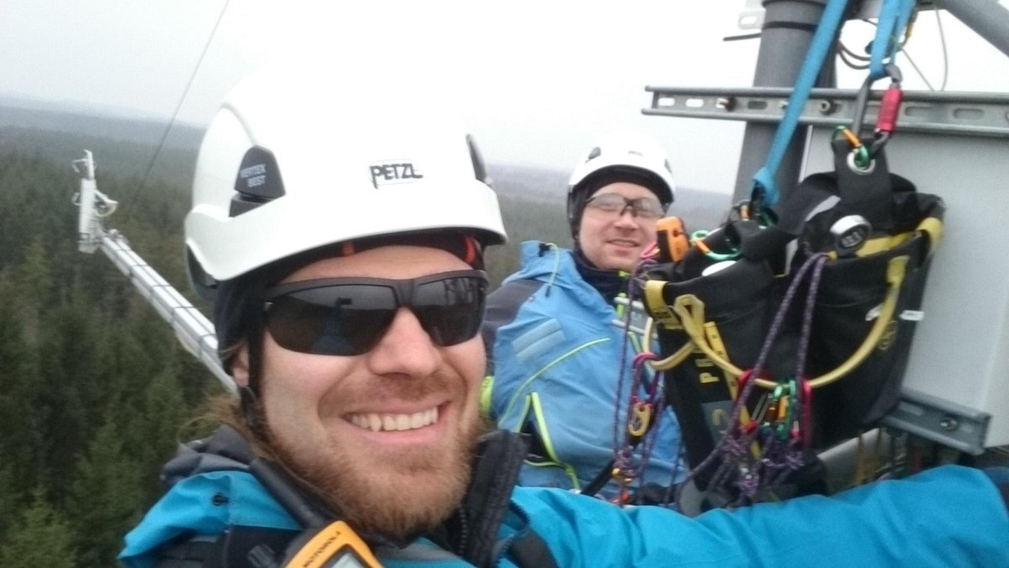 Michal Heliasz Och Tobias Biermann i hjälmar och med klätterutrustning, i masten, högt över trädtopparna.