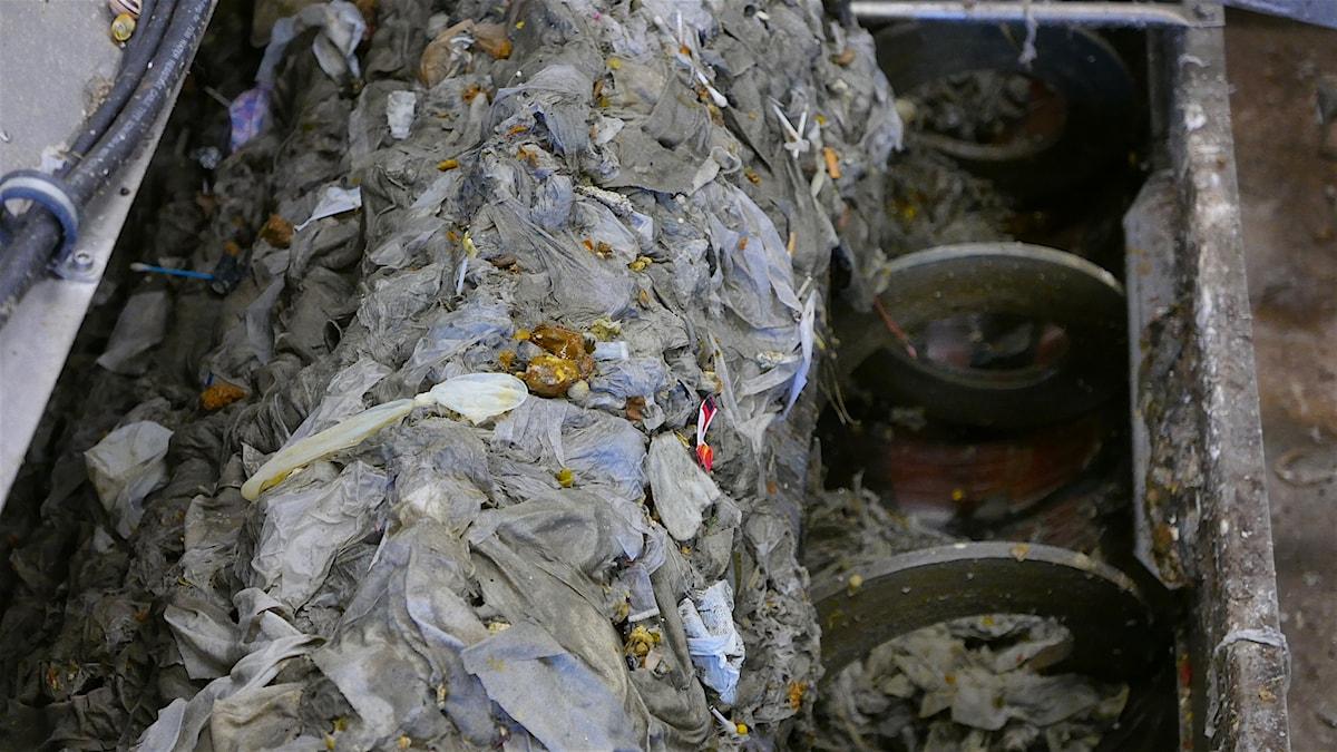 Plast som mals i reningsverk