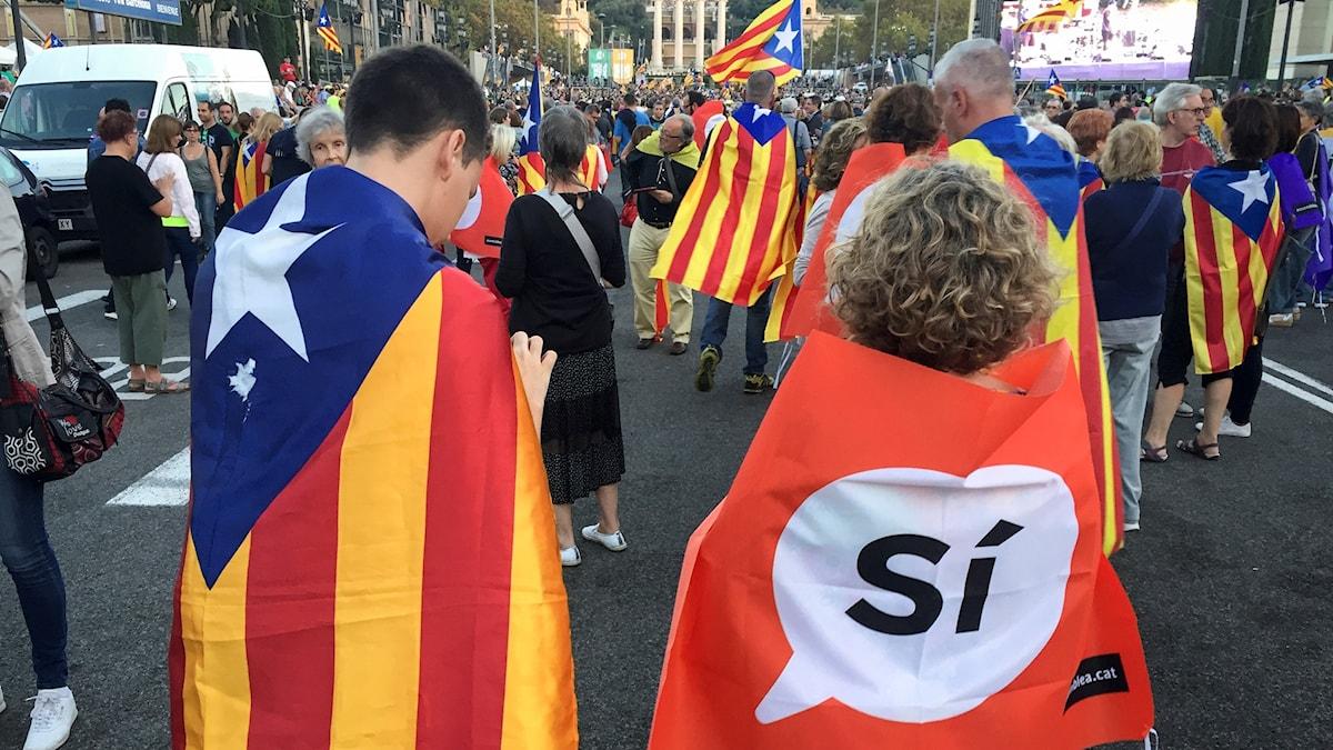 Festdeltagare med flaggor på ryggen