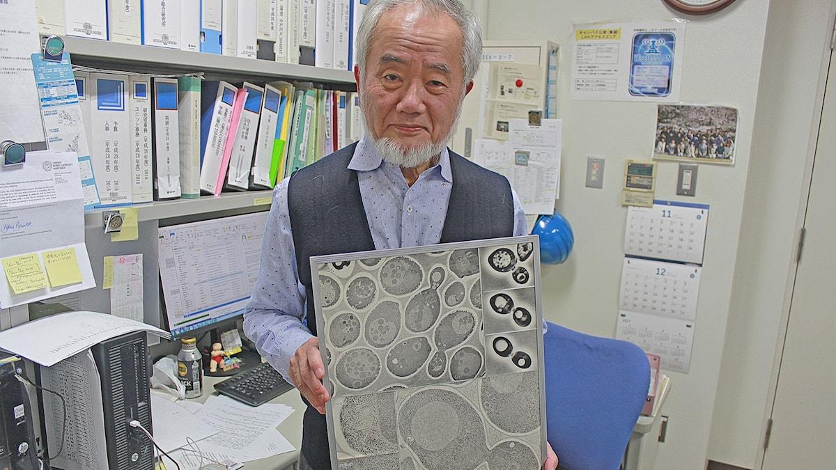 Nobelpristagaren Yoshinori Ohsumi med en plansch