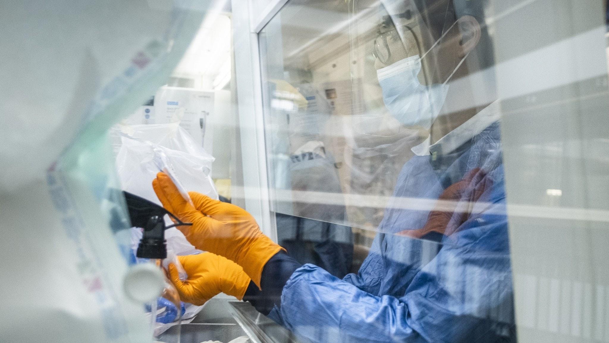 Ett laboratorium som analysera covid-19 prover