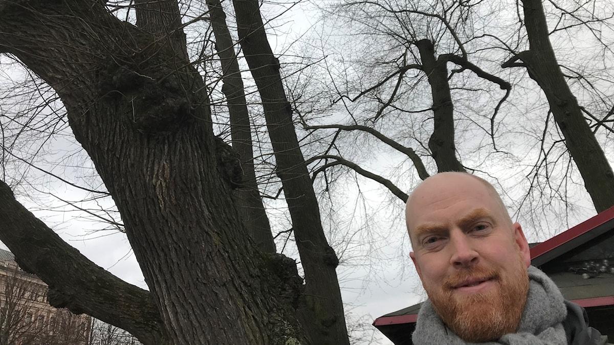 Henrik Sjömans huvud med almstammar och almkronor i bakgrunden