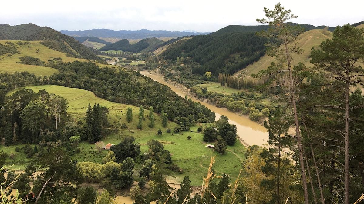 En floddal bland gröna kullar