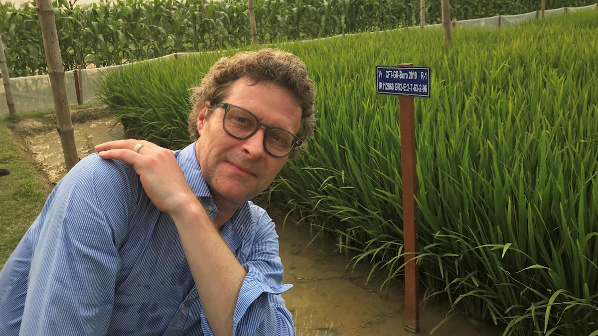 Gustaf Klarin vid risfält i Bangladesh