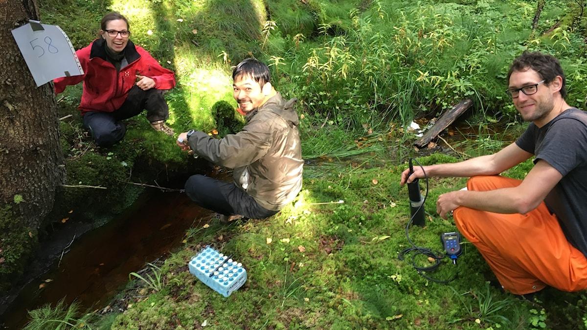 Tre personer med mätutrustning vid en bäck i skogen
