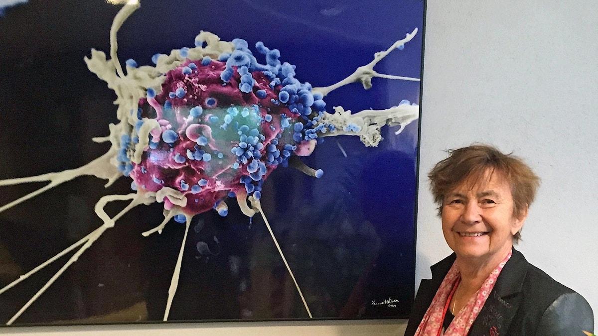 Britta Wahren framför en virusbild