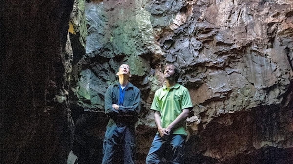 Forskarna inne i grotta, tittar uppåt