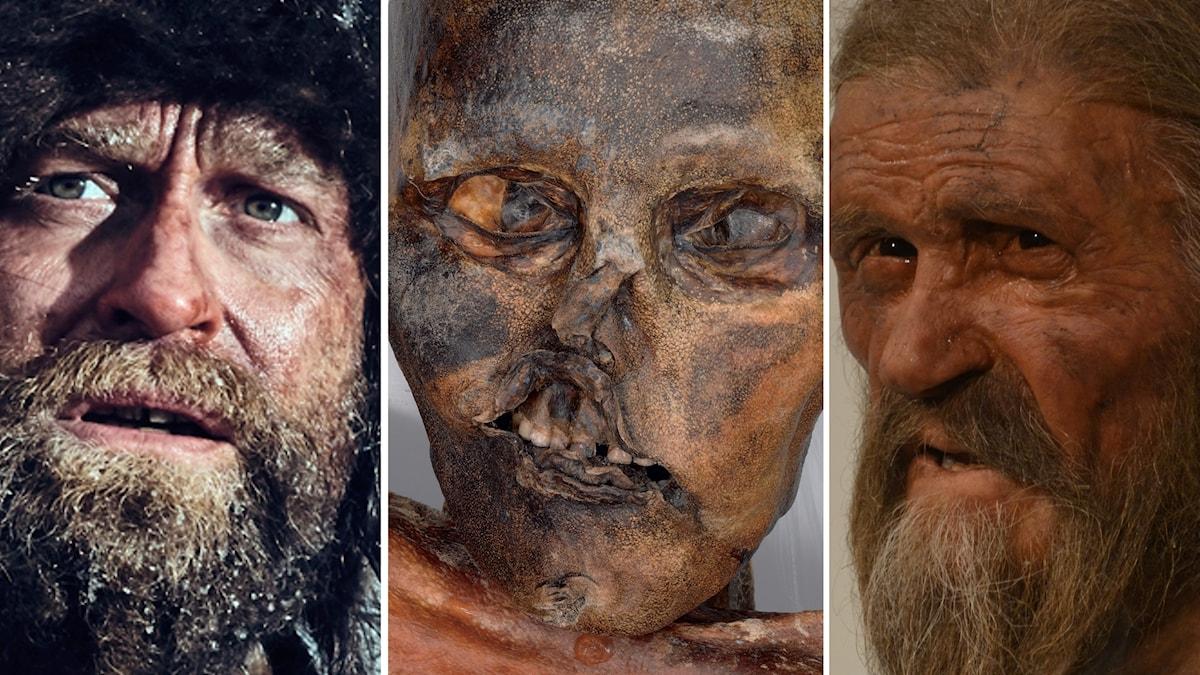 Tre bilder i en föreställande Ötzi från film, som mumie, som vaxdocka