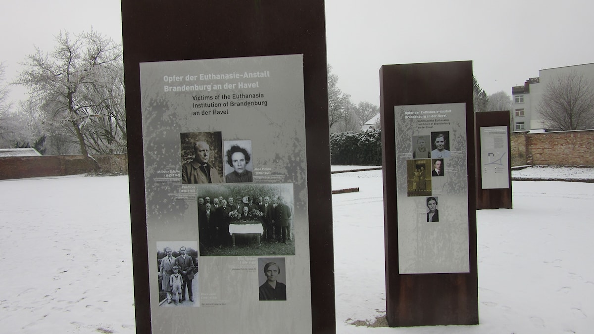 Minnesbilder i en snötäckt park