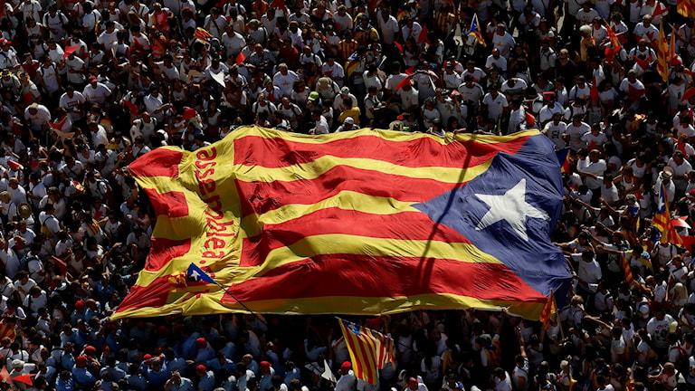 Stor folkmassa som bär en stor flagga