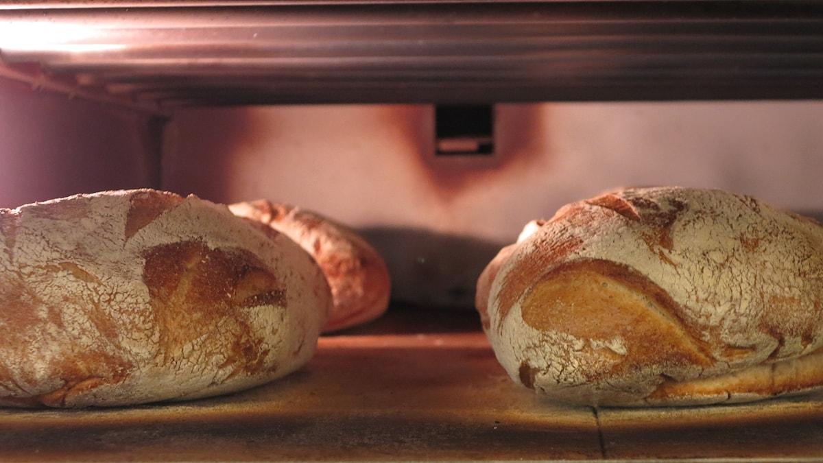 Tre brödlimpor i ugnen