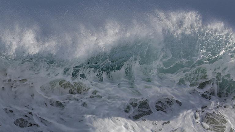 Våg. Foto: Chris Carlson