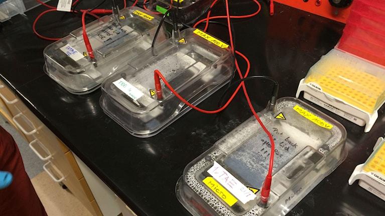 Genomskinliga lådor ihopkopplade med sladdar.