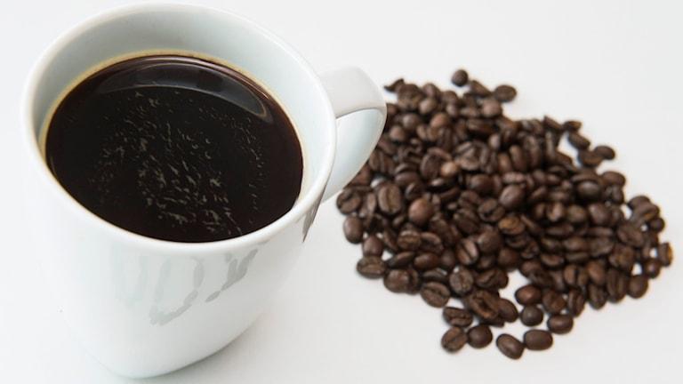Kaffekopp med bönor. Foto: TT