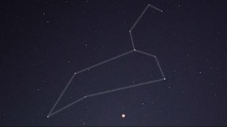 Ett fotografi på stjärnbilden Lejonet. Foto: Till Credner.