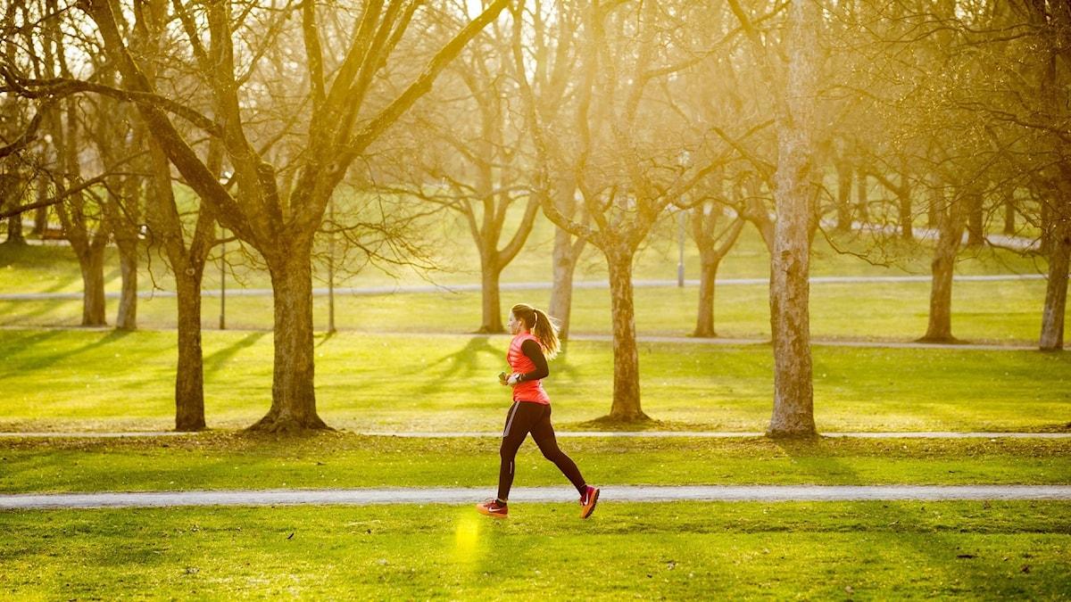 natur o hälsa
