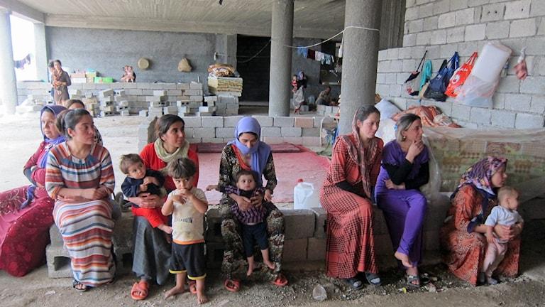 Yazidiska kvinnor  på flykt från IS
