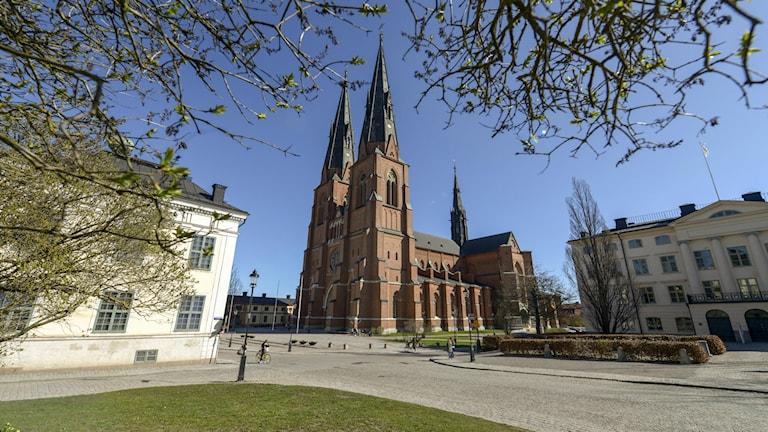 Uppsala Domkyrka. Foto:Bertil Ericson / TT