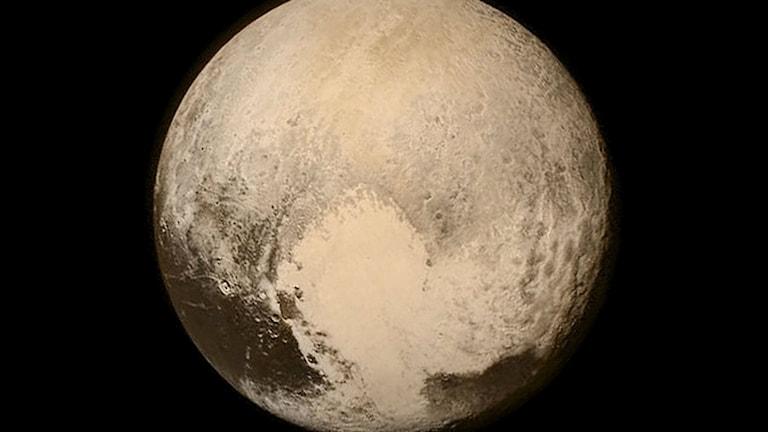 Närbild av miniplaneten Pluto, tagen när rymdsonden New Horizons gjorden en driveby i juli, 2015. Foto: NASA/TT