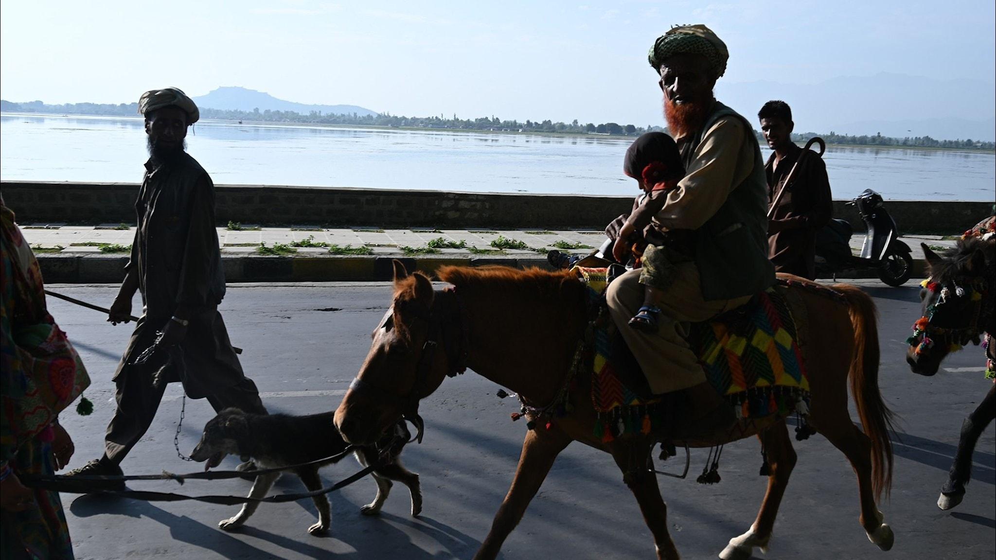 """""""Kashmir - den krossade drömmen om självständighet"""""""