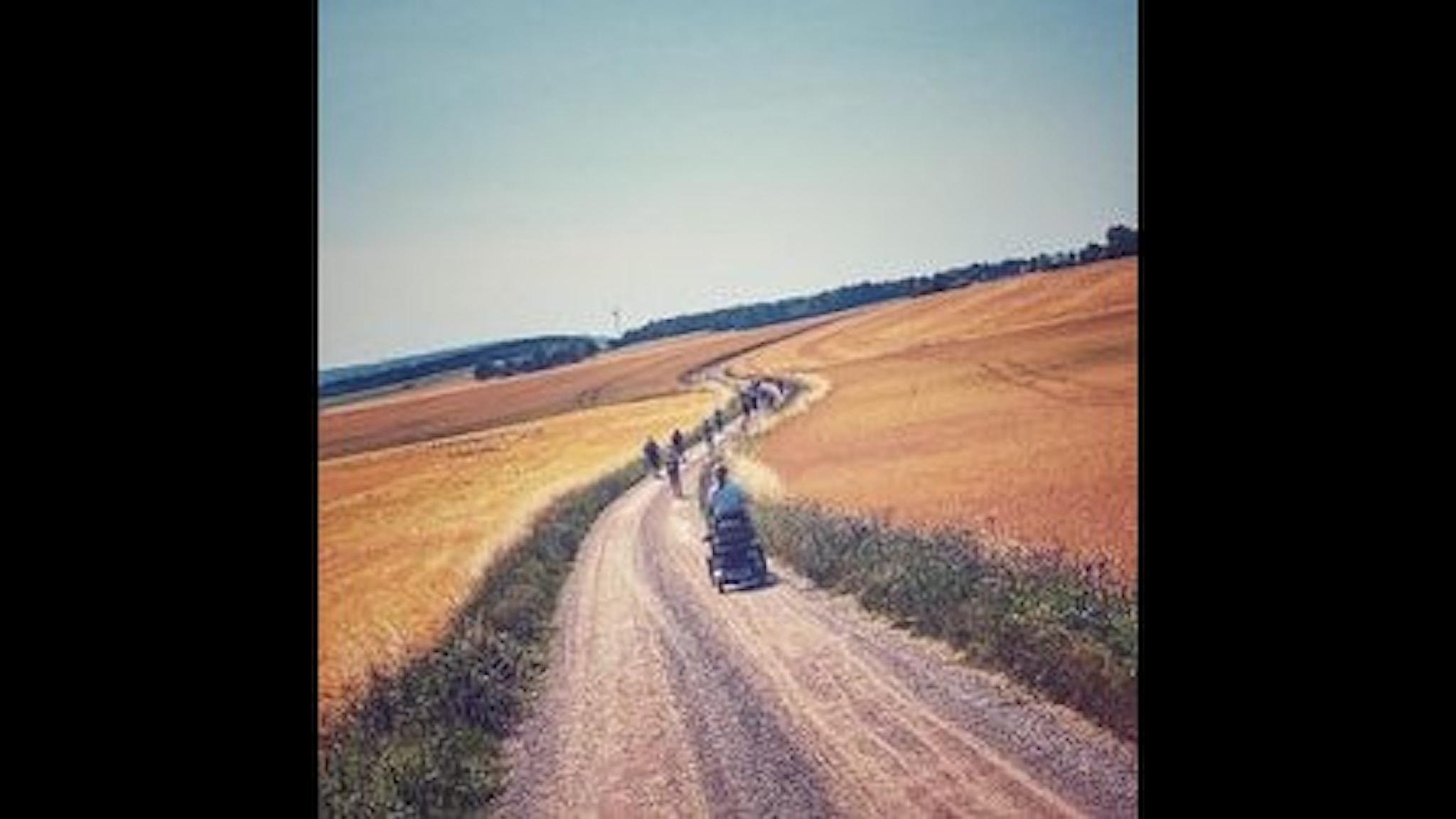 Pilgrimsvandring genom Europa för klimatet. En grupp människor går på en landsväg mellan åkrar. Längst bak syns någon gå med en barnvagn.