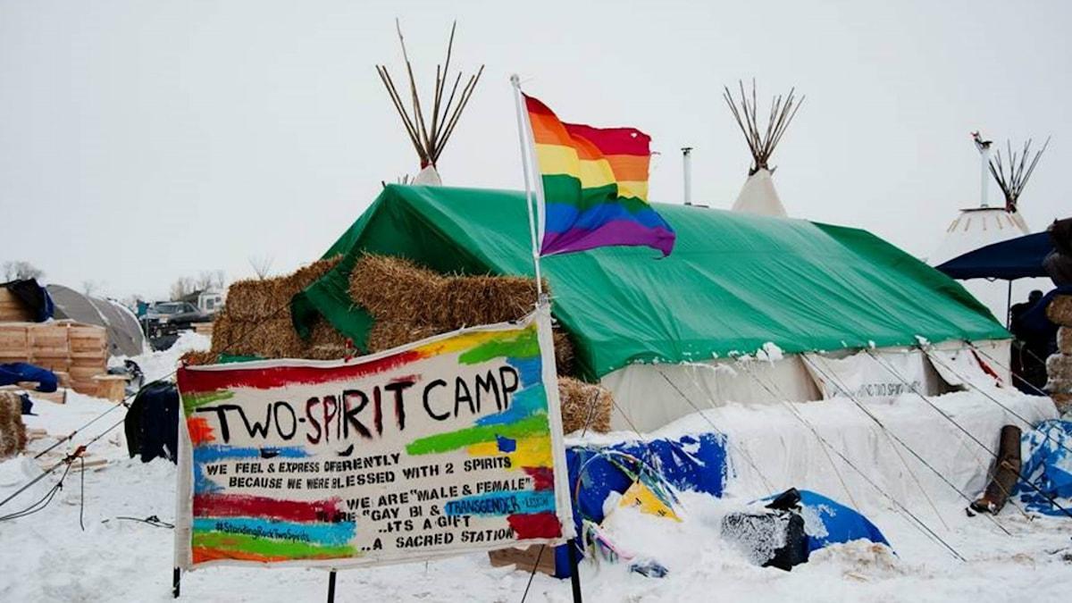 Two-spiritlägret i Sioux reservatet Standing Rock i den amerikanska delstaten North Dakota. Foto: Mattias Lundblad/SR