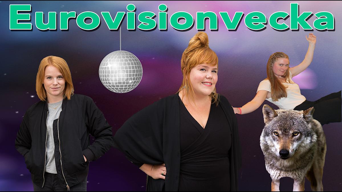 """Fh Camilla Fågelborg, Linnea Wikblad och Sara Kinberg. Sara sitter på en varg och över bilden står det """"Eurovisionvecka"""""""