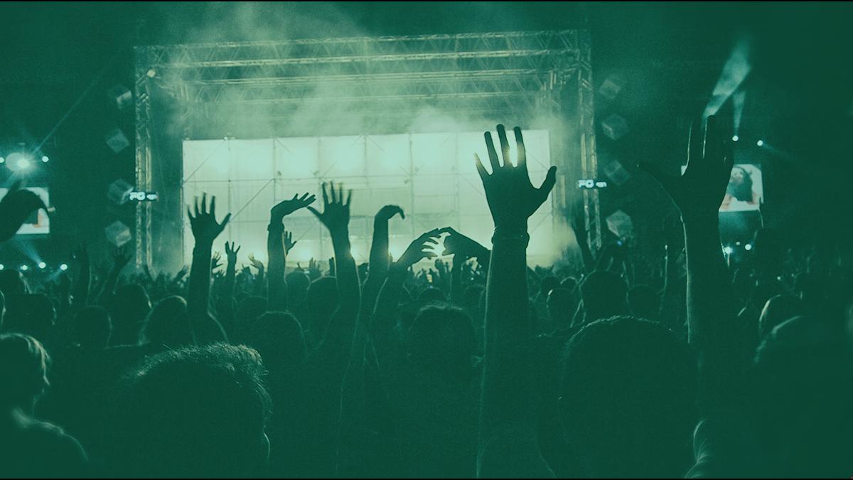 Bild på ett publikhav från en konsert