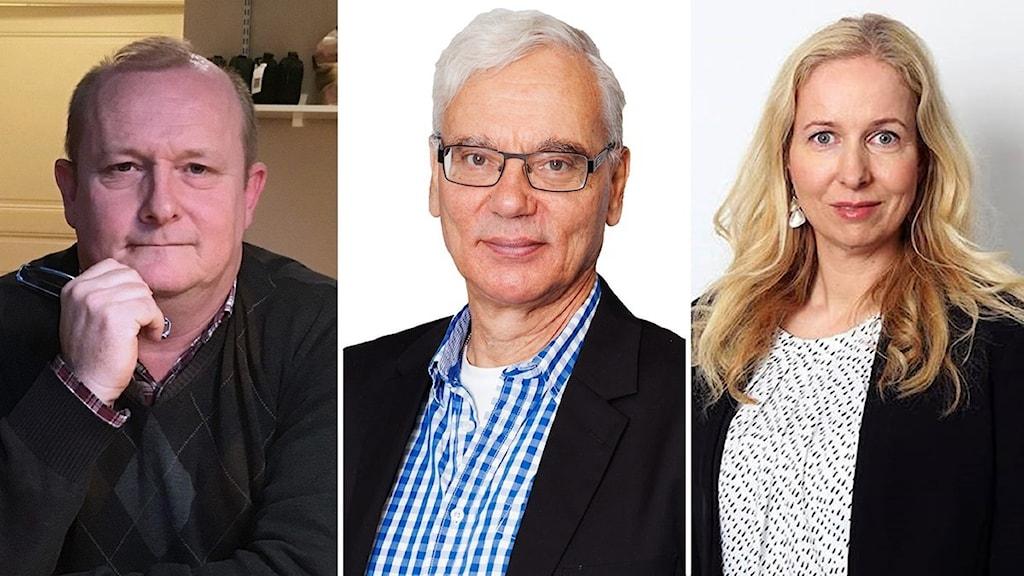 Dick Erixon, Martin Klepke och Anna Dahlberg.