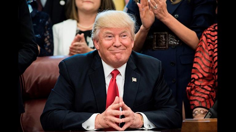 Donald Trump ler.