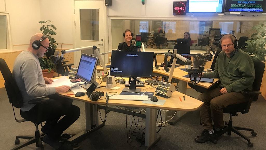 Panelen med Anders Lindberg, Tor Gasslander, och Tove Lifvendahl (på distans) och programledare Lasse Johansson.