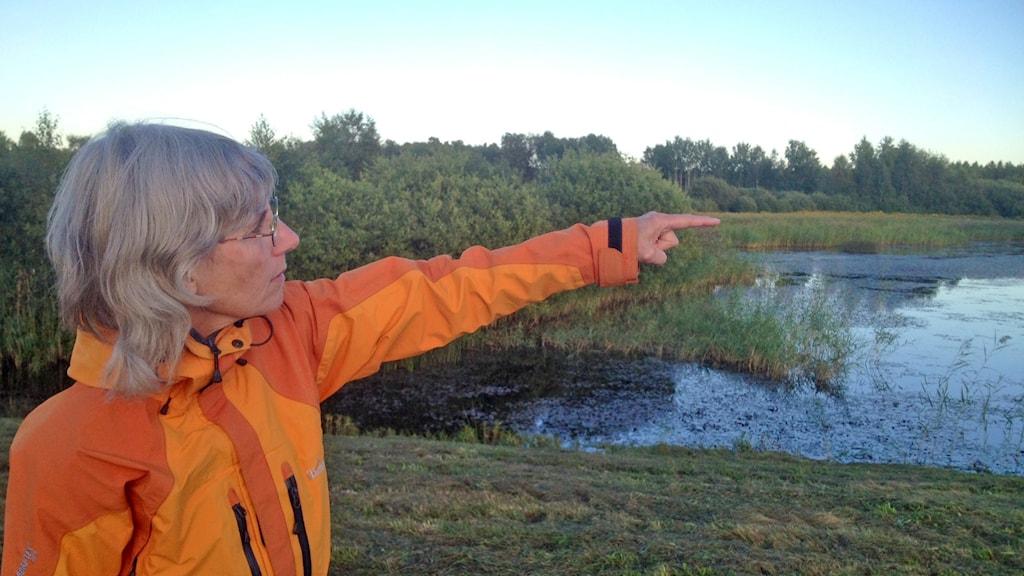 Eja Pedersen pekar ut över våtmarksområdet.
