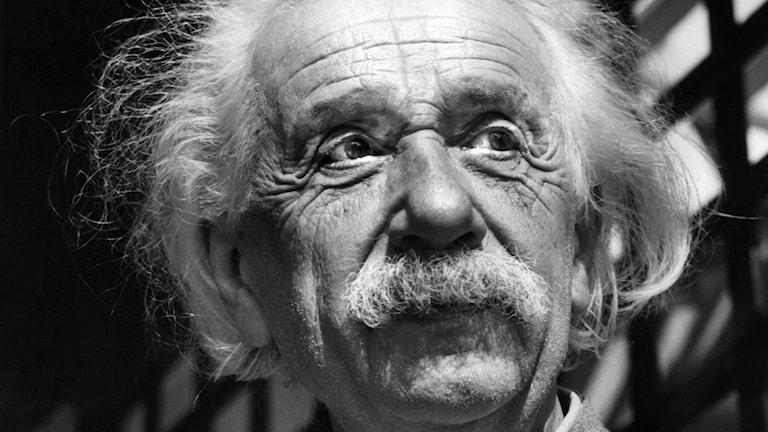 Albert Einstein Foto: TT/AP