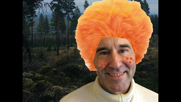 Mark Levengood med orange peruk. ser ut som ett troll i en skog. Foto: Anders Diamant  Montage: Marcus Eriksson