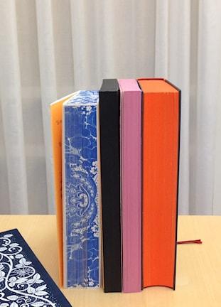 Böcker i olika färger Foto: Katarina von Arndt/SR