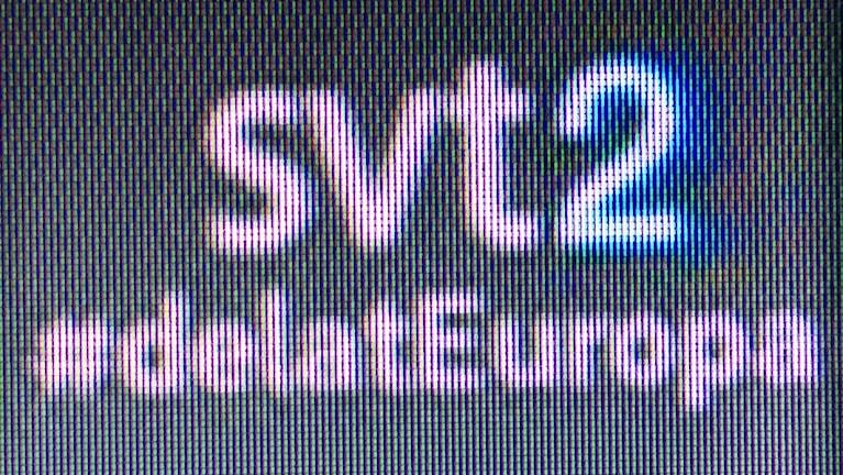 #delatEuropa - veckans SVT-satsning