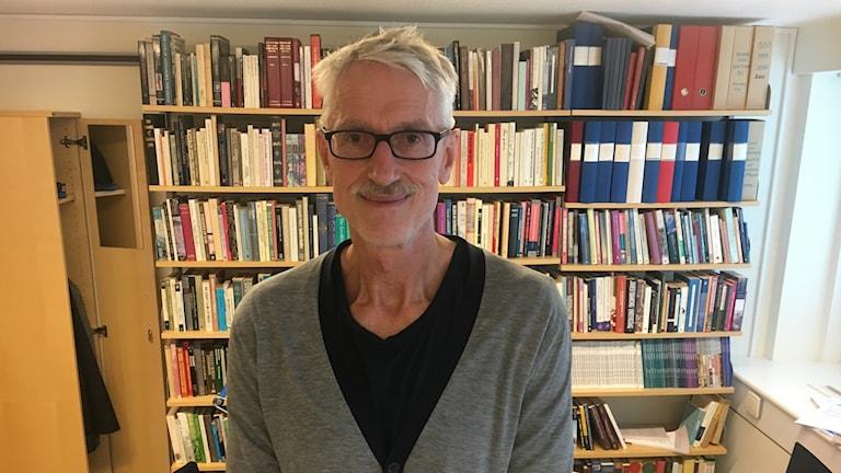 Per Bolin, professor i historia vid Södertörns högskola