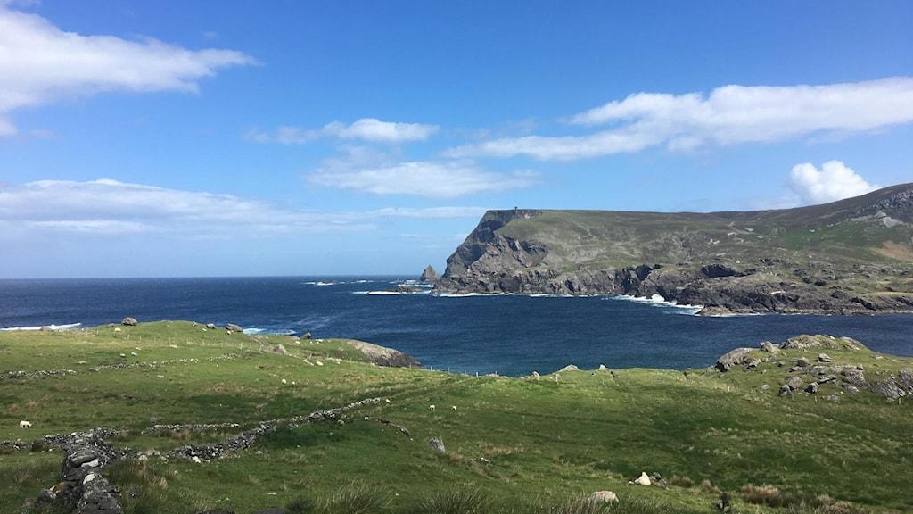 Utsikt med havet Irland.