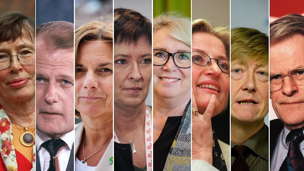 Porträtt på åtta miljöministrar på rad.