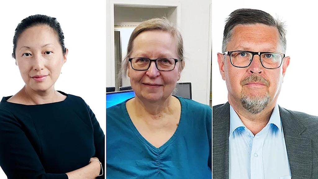 Tove Lifvendahl, Elisabeth Sandlund och Olov Abrahamsson
