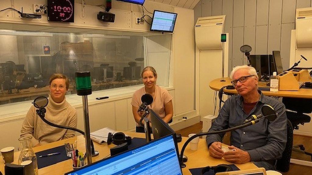 Lisa Pelling, Dagens Arena, Martin Klepke, Arbetet och Anna Dahlberg, Expressen.