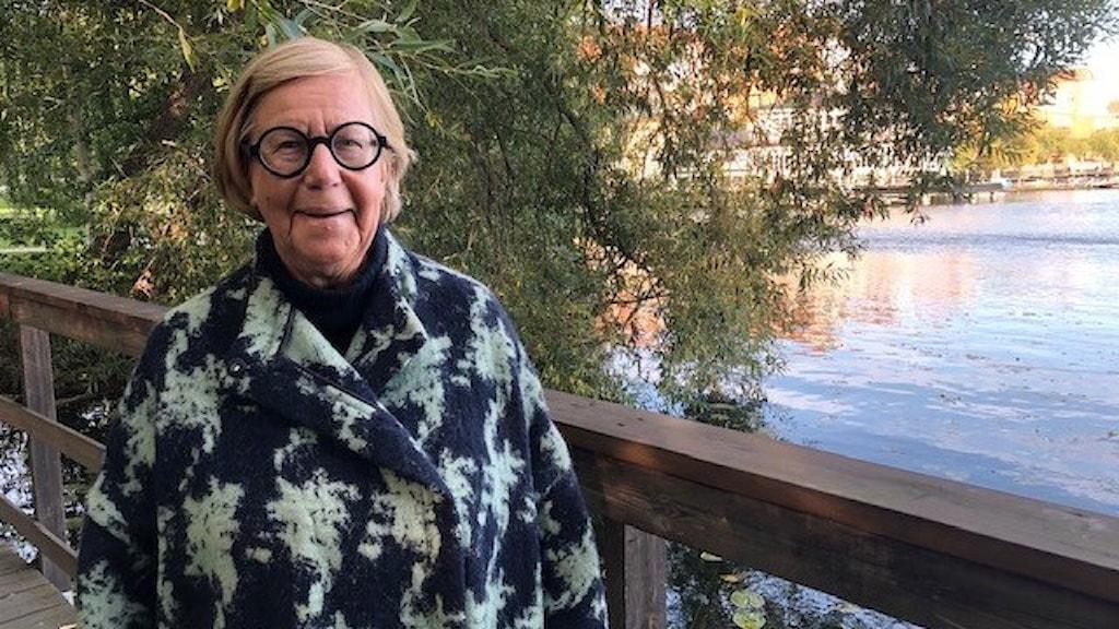 Barbro Hedvall, skribent och författare till boken Stil och politik