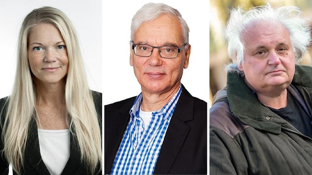 Maria Ludvigsson, Martin Klepke och Göran Greider